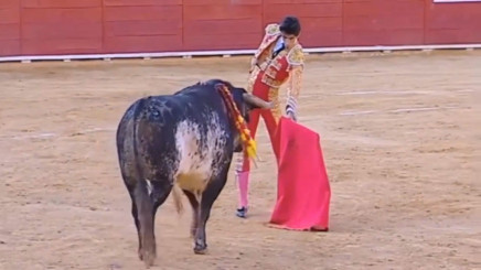 VIDEO: Moments before Matador Victor Barrio gored to death during bullfight  live on TV